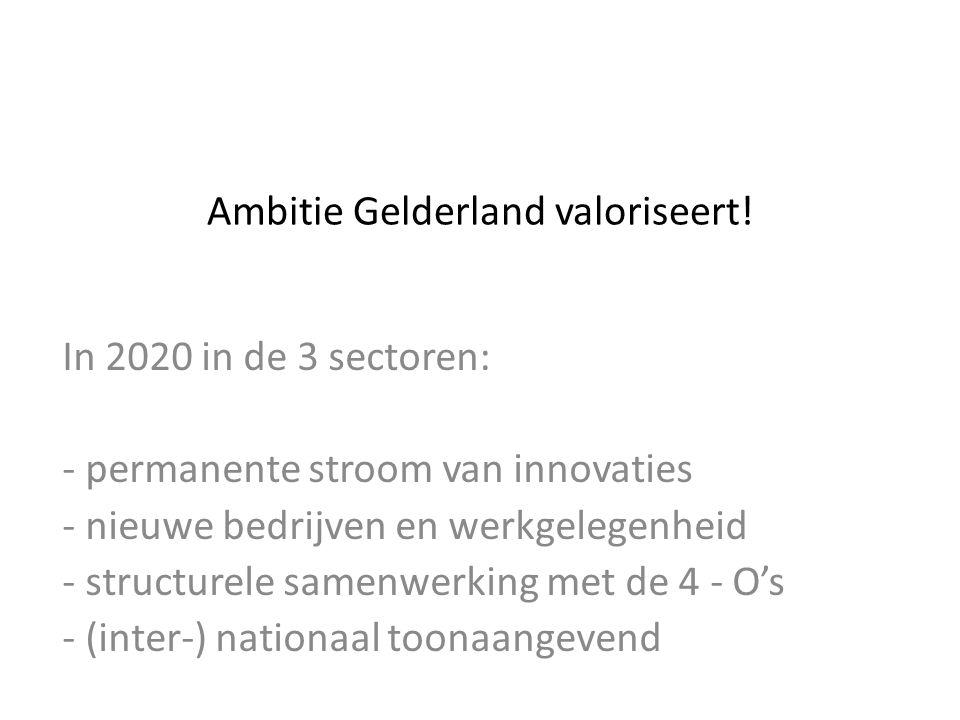 Ambitie Gelderland valoriseert.