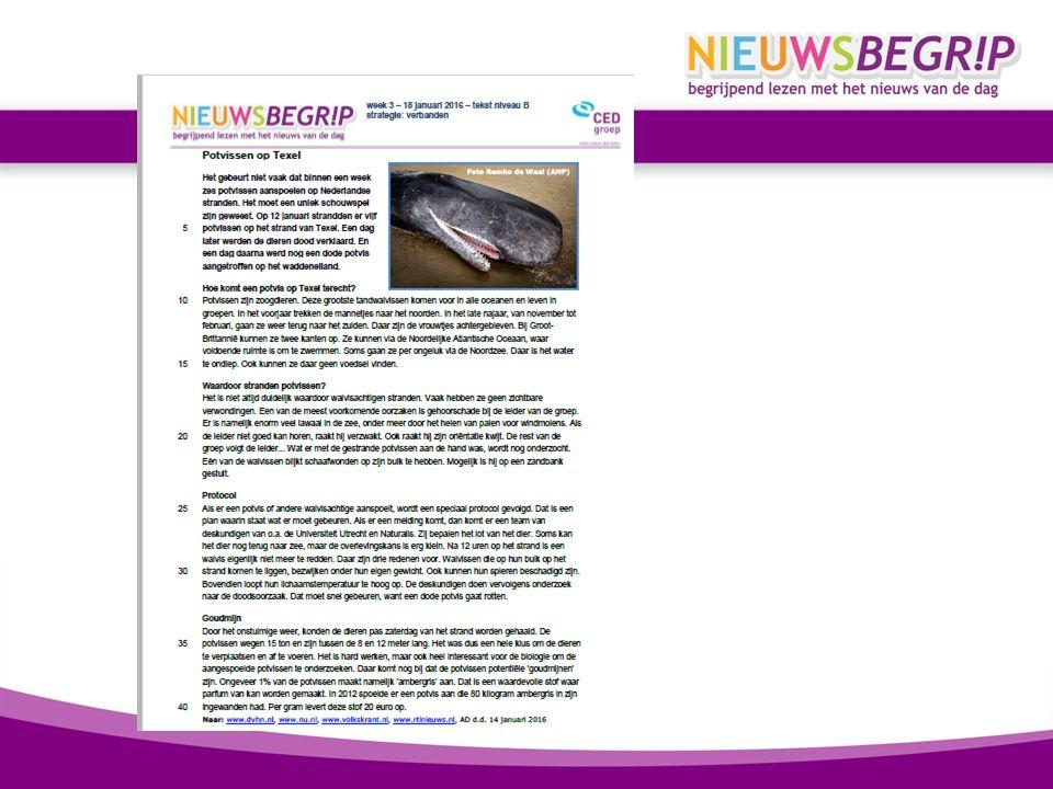 Onderdelen van Nieuwsbegrip Nieuwsbegrip Schrijven Nieuwsrekenen NIEUWSBEGRIP NieuwsbegripBasis Begrijpend lezen van informatieve teksten (DOWNLOADEN) NieuwsbegripXL Begrijpend lezen van andere tekstsoorten, woordenschat, toetsen (ONLINE) Nieuwsbegrip financieel Nieuwsbegrip Thuis
