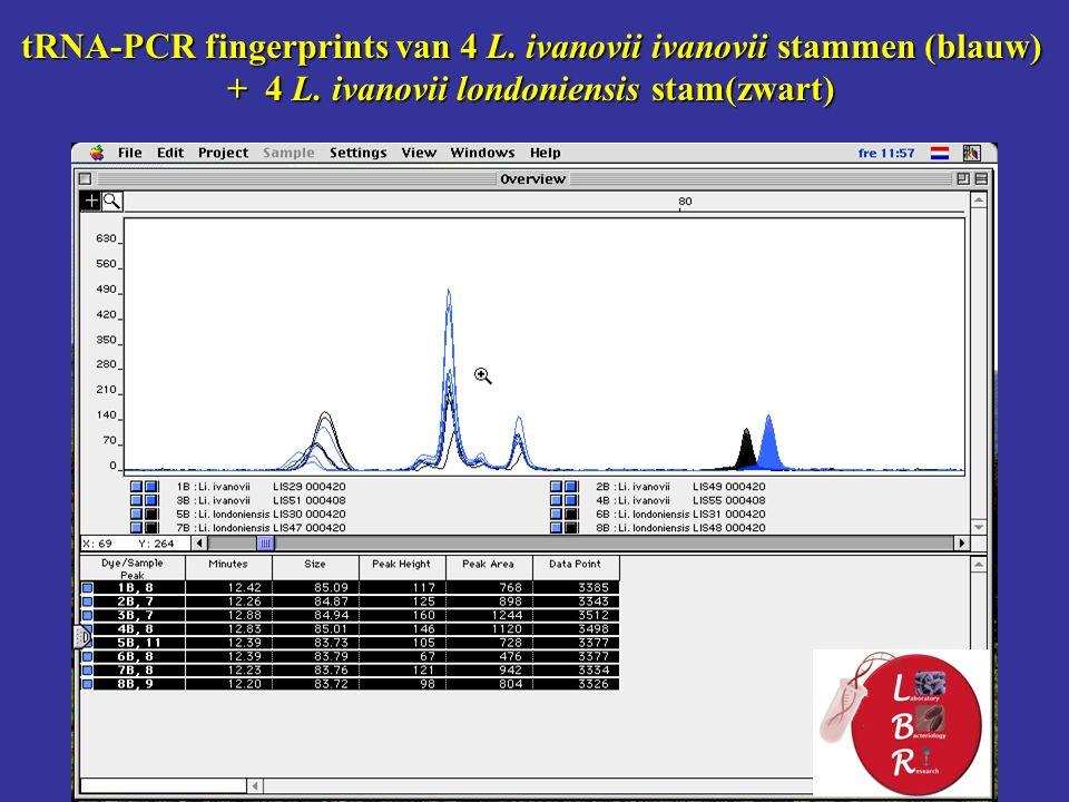 tRNA-PCR fingerprints van 4 L. ivanovii ivanovii stammen (blauw) + 4 L.