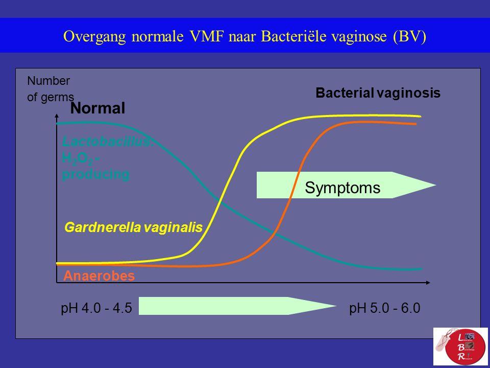 Bacterial vaginosis Number of germs Normal Symptoms Lactobacillus: H 2 O 2 - producing Gardnerella vaginalis Anaerobes pH 4.0 - 4.5pH 5.0 - 6.0 Overgang normale VMF naar Bacteriële vaginose (BV)