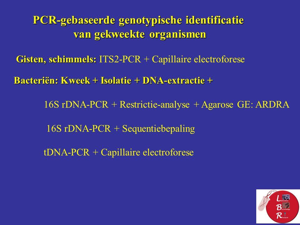 PCR-gebaseerde genotypische identificatie van gekweekte organismen Gisten, schimmels: Gisten, schimmels: ITS2-PCR + Capillaire electroforese Bacteriën: Kweek + Isolatie + DNA-extractie + 16S rDNA-PCR + Restrictie-analyse + Agarose GE: ARDRA 16S rDNA-PCR + Sequentiebepaling tDNA-PCR + Capillaire electroforese