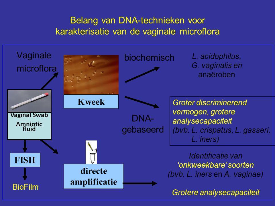 Belang van DNA-technieken voor karakterisatie van de vaginale microflora Vaginale microflora Kweek directe amplificatie Identificatie van 'onkweekbare' soorten (bvb.