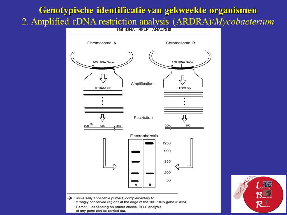 Genotypische identificatie van gekweekte organismen 2.