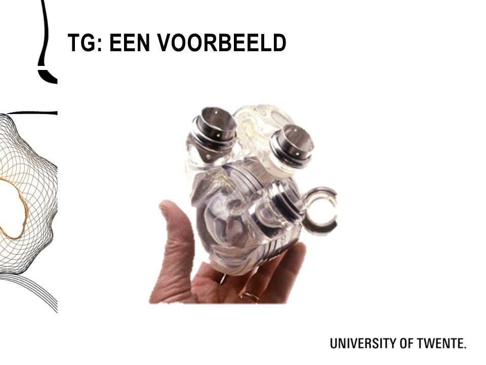 TG: EEN VOORBEELD