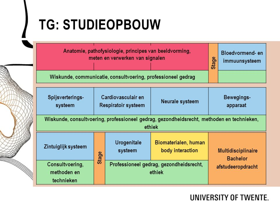 TG: STUDIEOPBOUW Spijsverterings- systeem Cardiovasculair en Respiratoir systeem Neurale systeem Bewegings- apparaat Wiskunde, consultvoering, profess