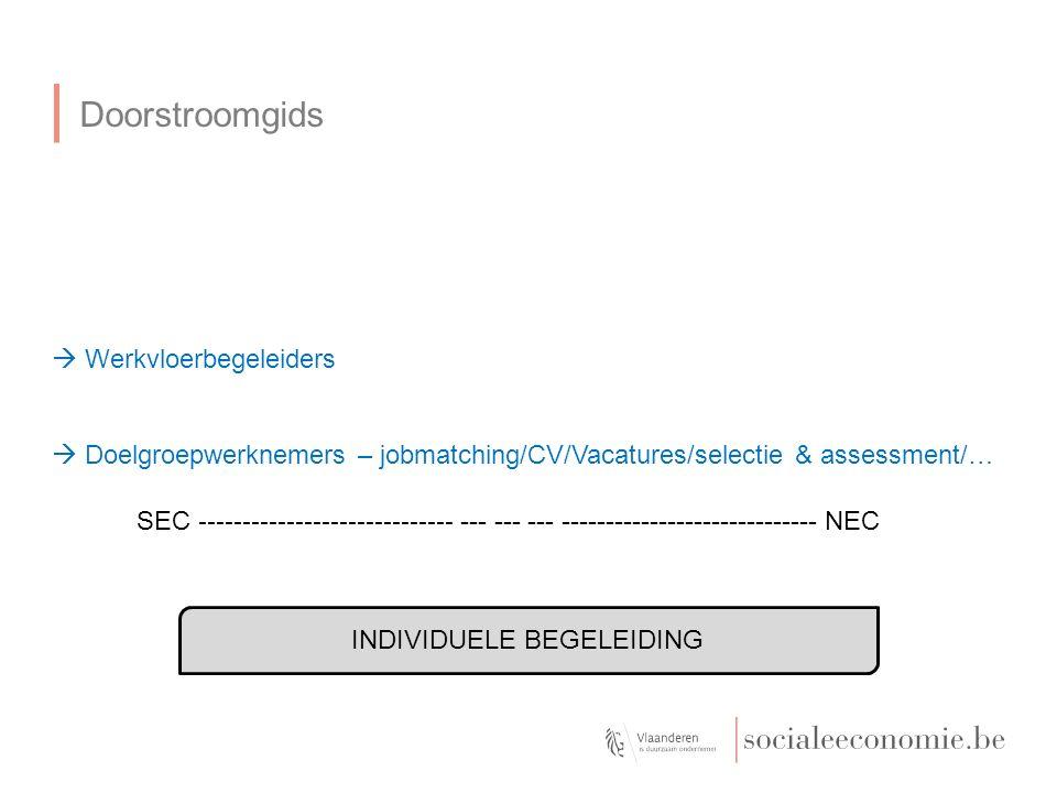 Doorstroomgids INDIVIDUELE BEGELEIDING SEC ----------------------------- --- --- --- ----------------------------- NEC  Werkvloerbegeleiders  Doelgroepwerknemers – jobmatching/CV/Vacatures/selectie & assessment/…