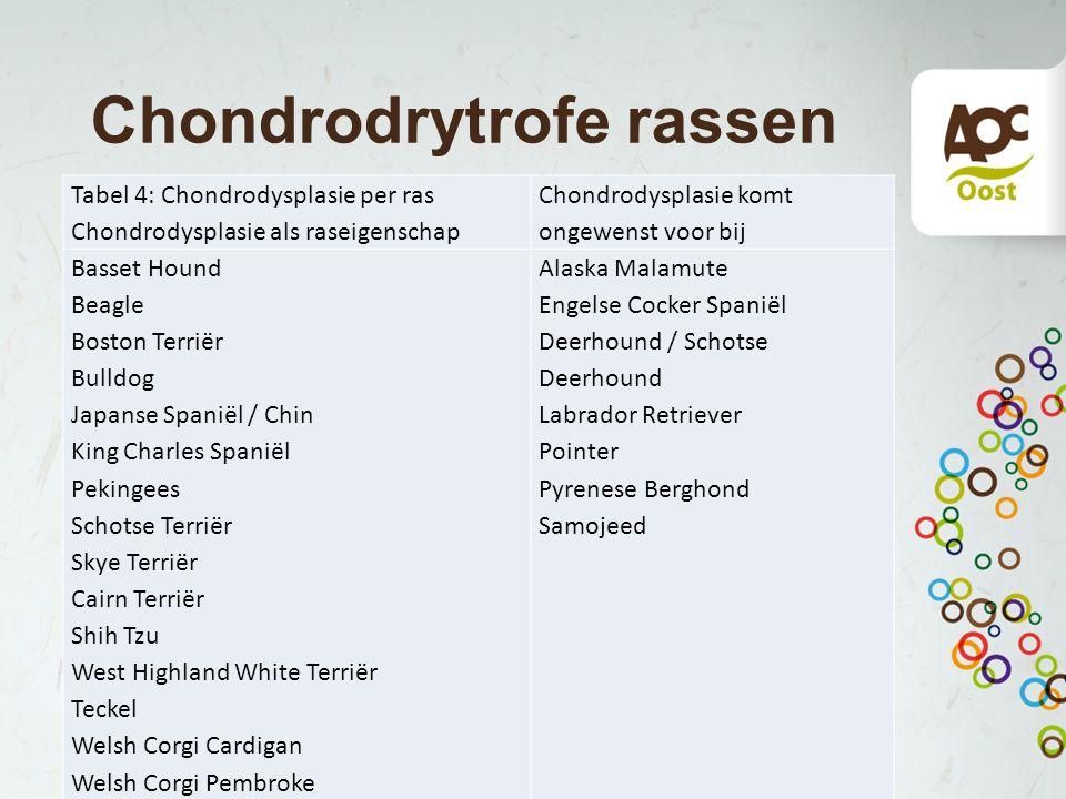 Chondrodrytrofe rassen Tabel 4: Chondrodysplasie per ras Chondrodysplasie als raseigenschap Chondrodysplasie komt ongewenst voor bij Basset Hound Beag