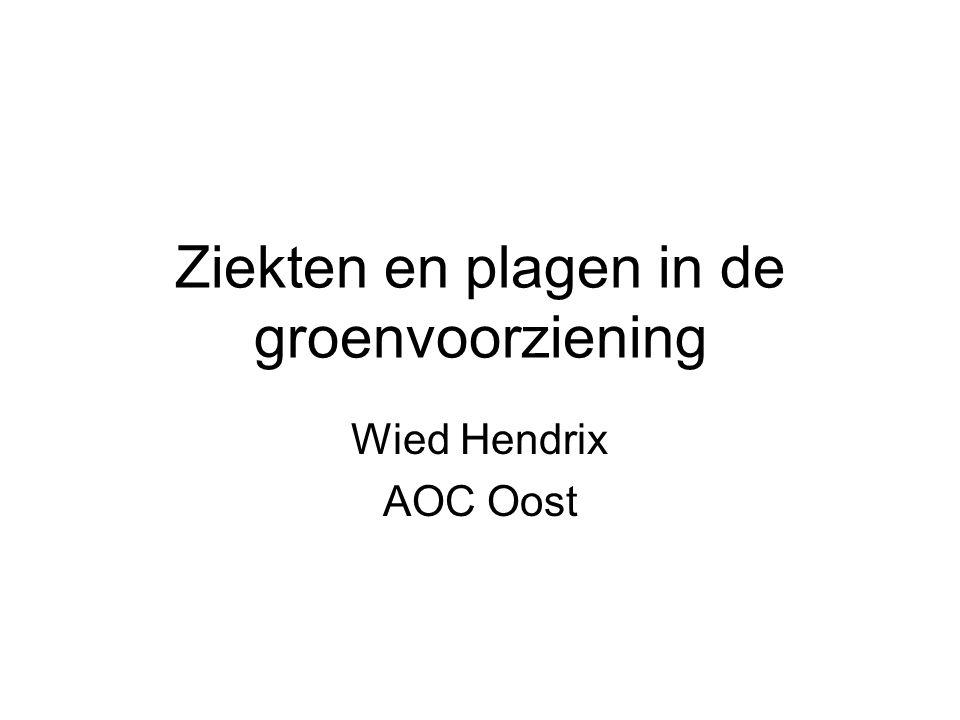 Ziekten en plagen in de groenvoorziening Wied Hendrix AOC Oost