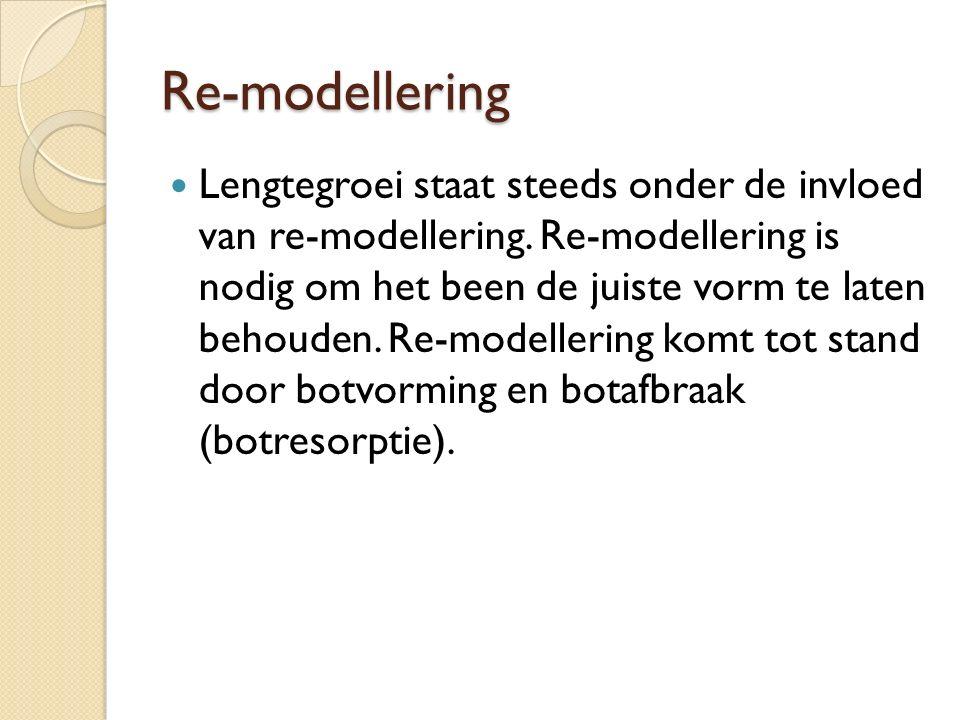 Re-modellering Lengtegroei staat steeds onder de invloed van re-modellering. Re-modellering is nodig om het been de juiste vorm te laten behouden. Re-