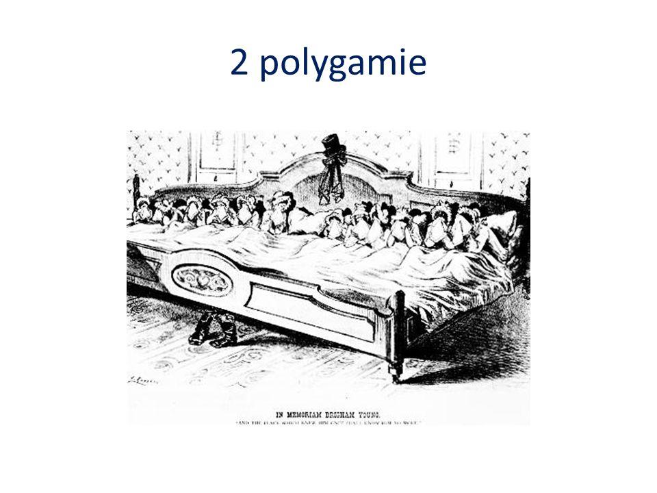 2 polygamie