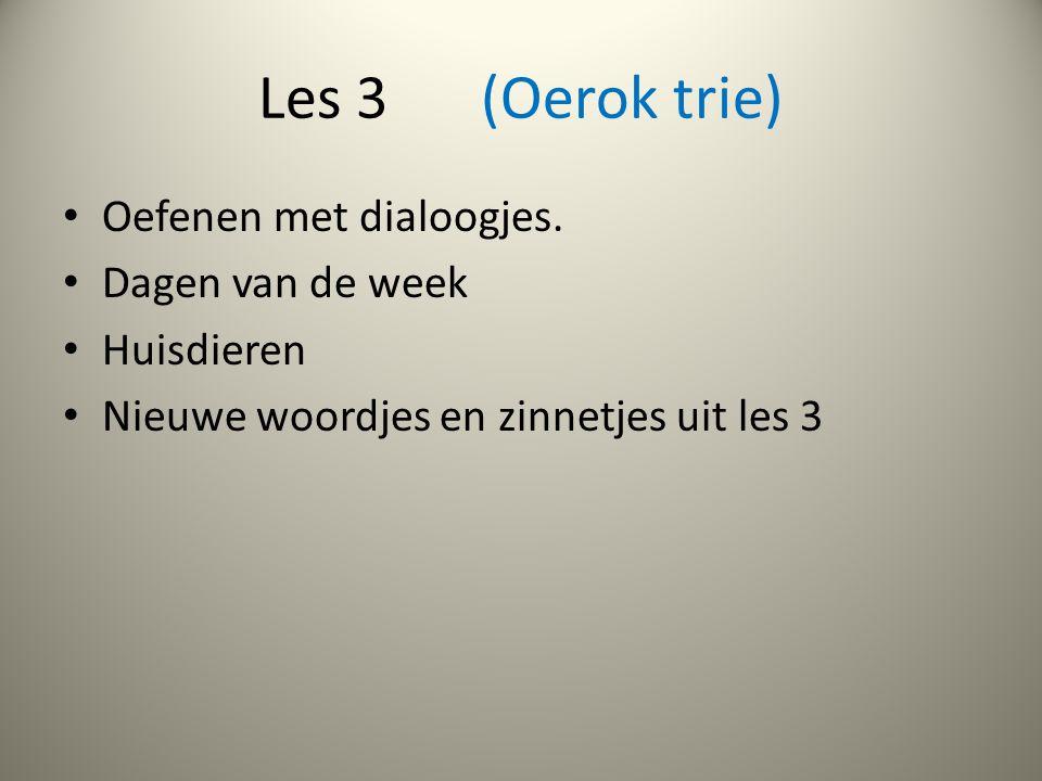 Les 3 (Oerok trie) Oefenen met dialoogjes.