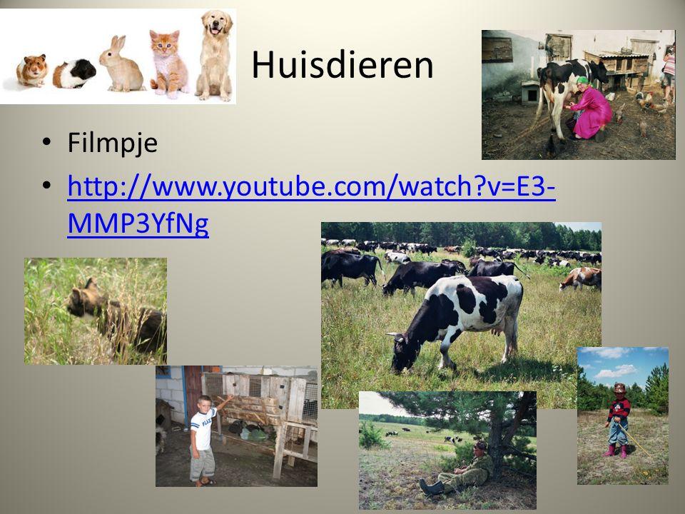 Huisdieren Filmpje http://www.youtube.com/watch v=E3- MMP3YfNg http://www.youtube.com/watch v=E3- MMP3YfNg