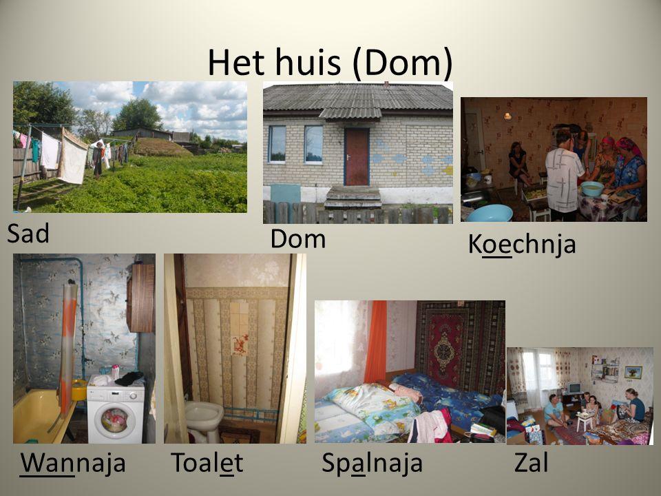 Het huis (Dom) Sad Dom Koechnja WannajaToaletSpalnajaZal