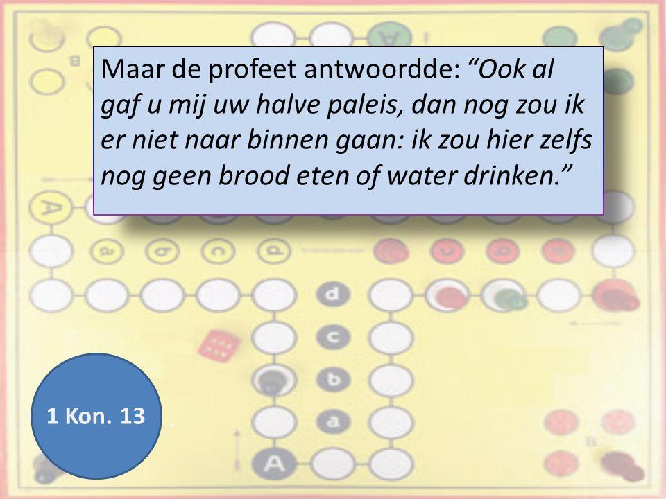 Maar de profeet antwoordde: Ook al gaf u mij uw halve paleis, dan nog zou ik er niet naar binnen gaan: ik zou hier zelfs nog geen brood eten of water drinken. 1 Kon.