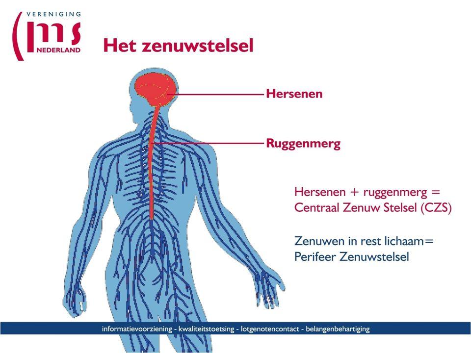 MS, denken en voelen (Naam org., datum en locatie) (Naam voorlichter) voorlichter Multiple Sclerose Vereniging Nederland (MSVN)