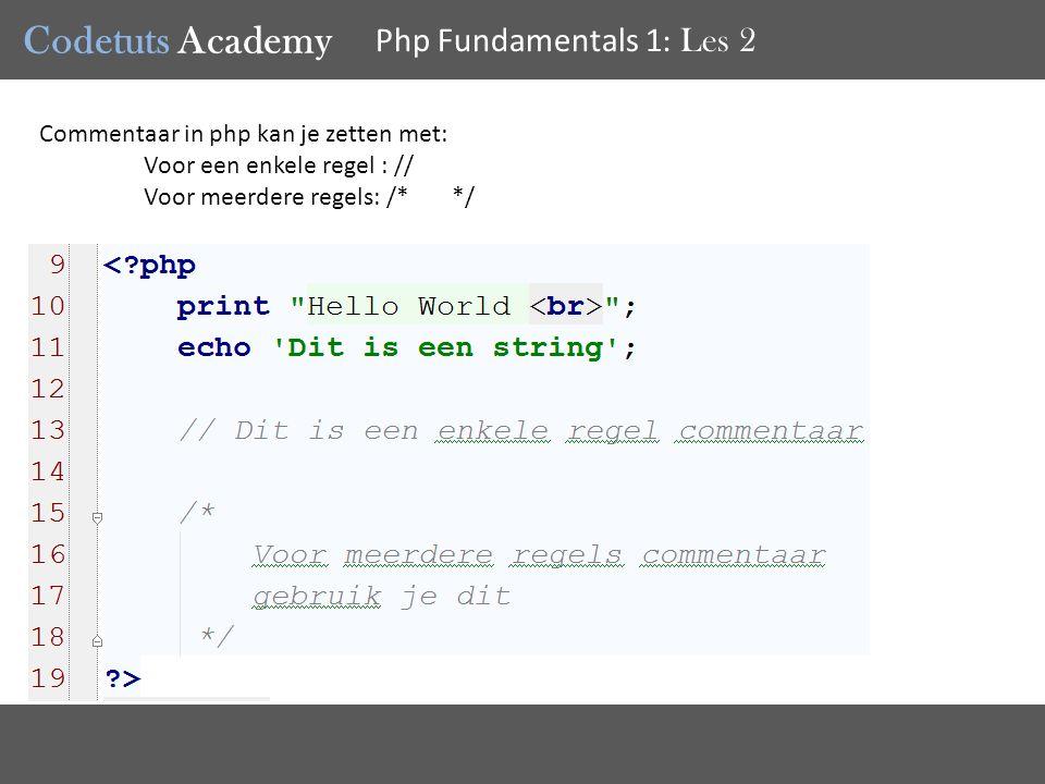 Codetuts Academy Php Fundamentals 1 : Les 2 Commentaar in php kan je zetten met: Voor een enkele regel : // Voor meerdere regels: /* */
