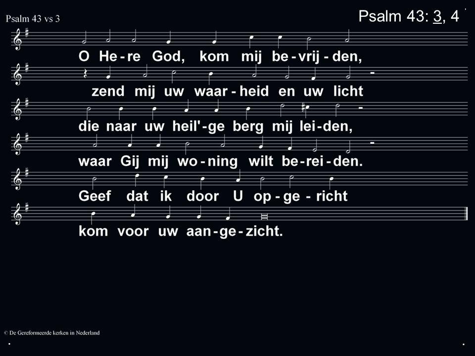 ... Psalm 43: 3, 4