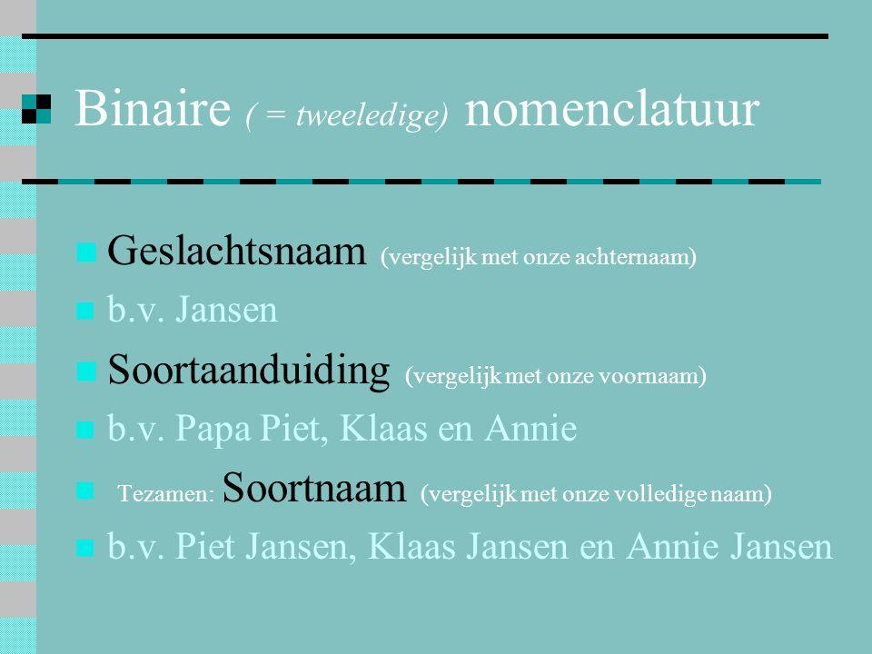 Geslachtsnaam (vergelijk met onze achternaam) b.v. Jansen Soortaanduiding (vergelijk met onze voornaam) b.v. Papa Piet, Klaas en Annie Tezamen: Soortn