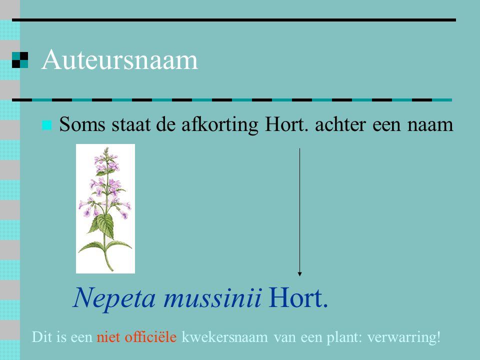Auteursnaam Soms staat de afkorting Hort. achter een naam Nepeta mussinii Hort. Dit is een niet officiële kwekersnaam van een plant: verwarring!