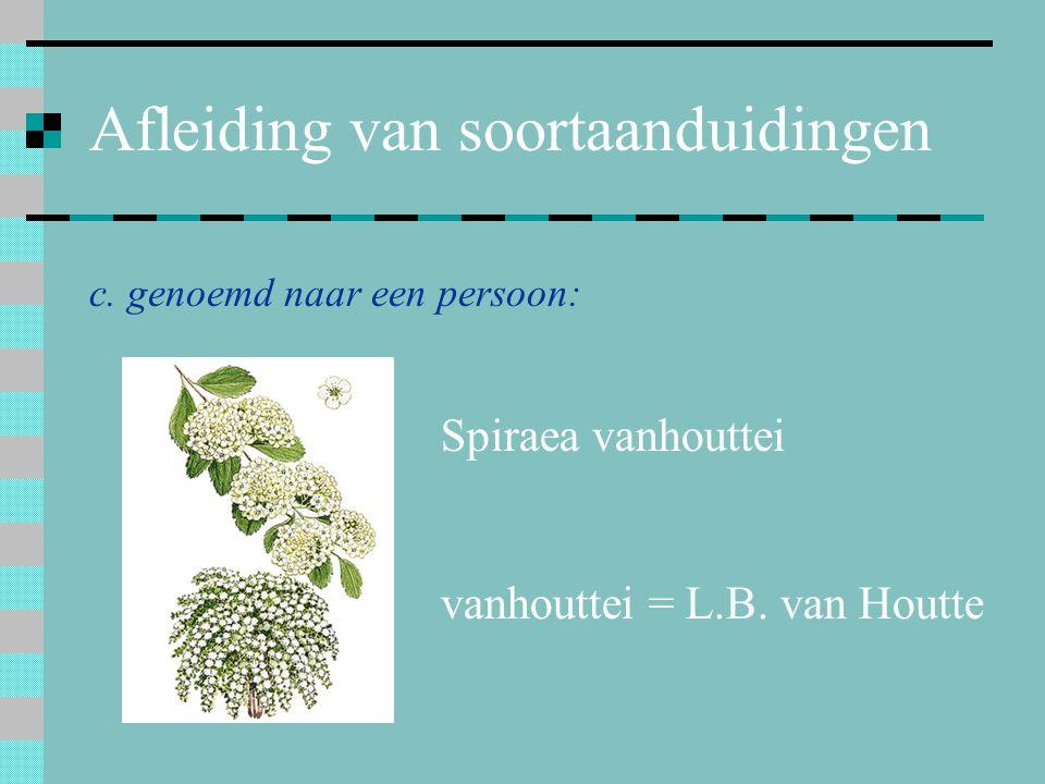 Afleiding van soortaanduidingen c. genoemd naar een persoon: Spiraea vanhouttei vanhouttei = L.B. van Houtte