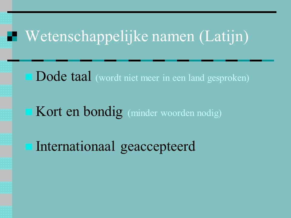 Wetenschappelijke namen (Latijn) Dode taal (wordt niet meer in een land gesproken) Kort en bondig (minder woorden nodig) Internationaal geaccepteerd