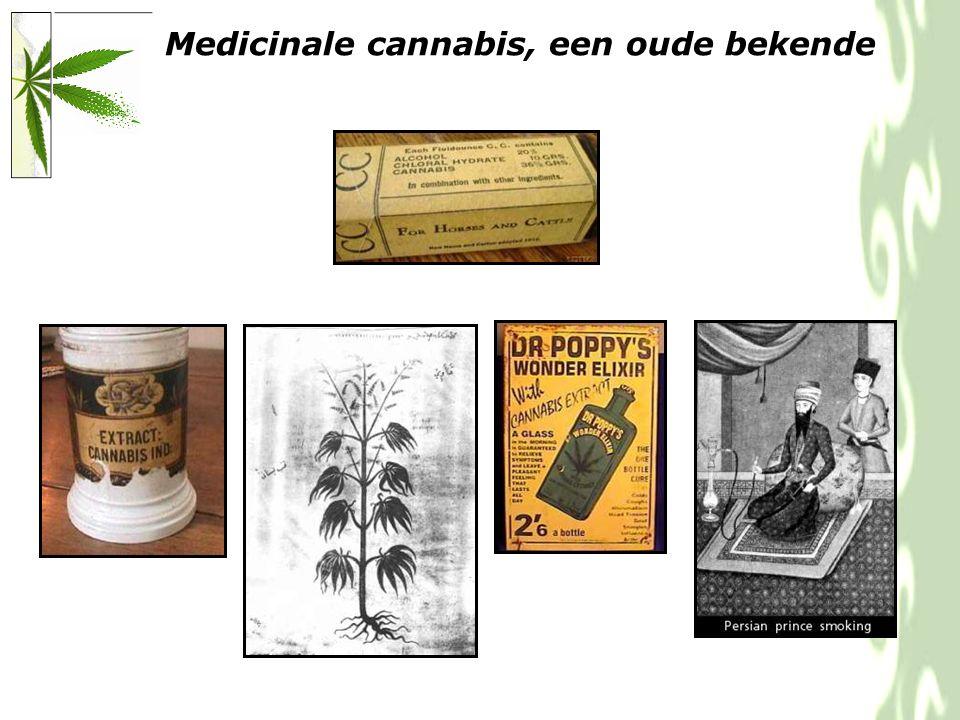 Cannabis flos = gedroogde bloemtop