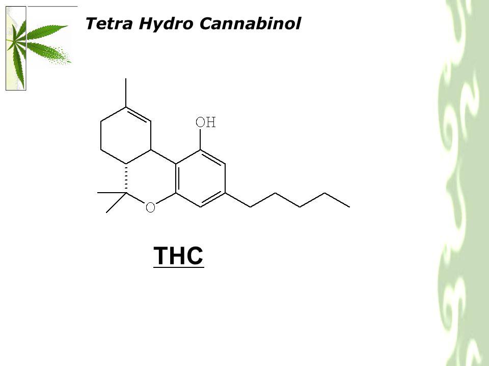 Tetra Hydro Cannabinol THC