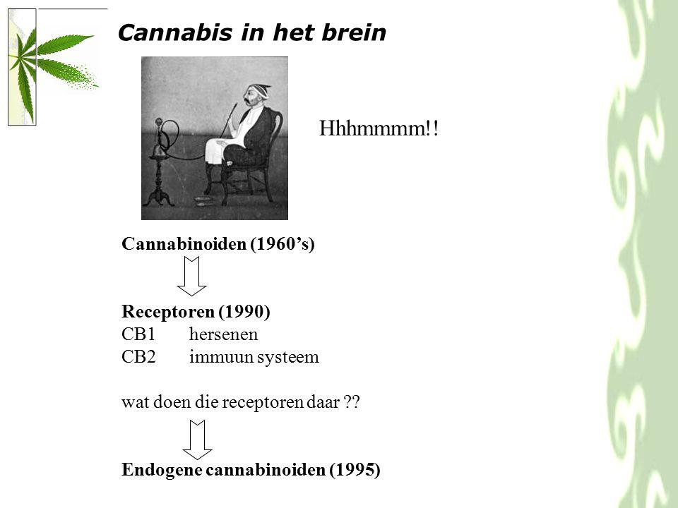 Cannabinoiden (1960's) Receptoren (1990) CB1hersenen CB2immuun systeem wat doen die receptoren daar .