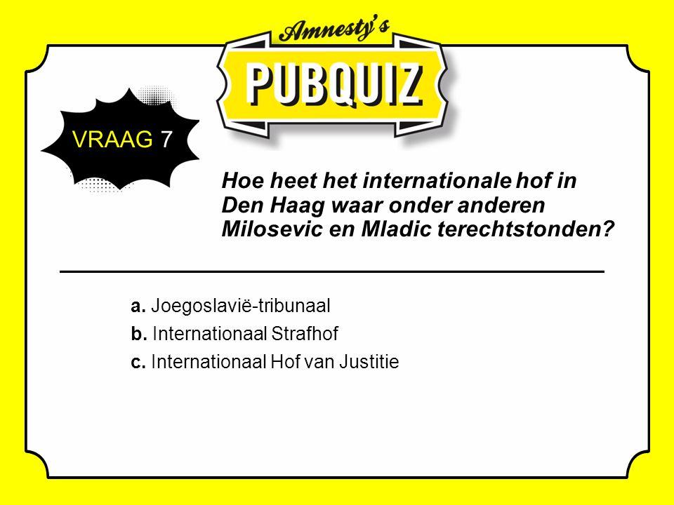 VRAAG 7 Hoe heet het internationale hof in Den Haag waar onder anderen Milosevic en Mladic terechtstonden.