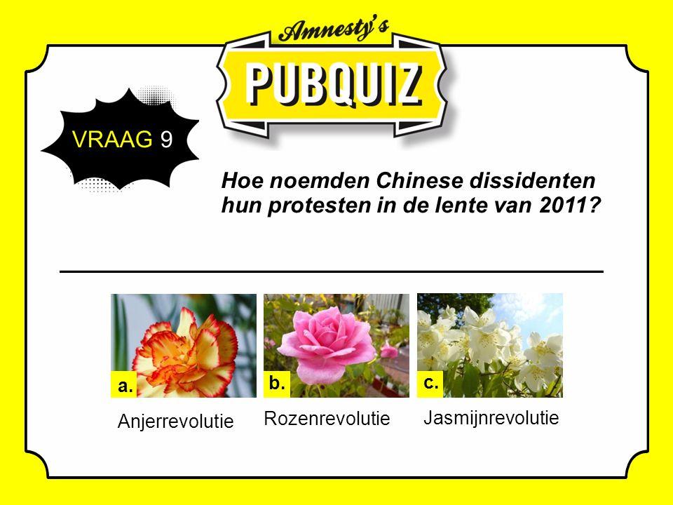 VRAAG 9 Hoe noemden Chinese dissidenten hun protesten in de lente van 2011.