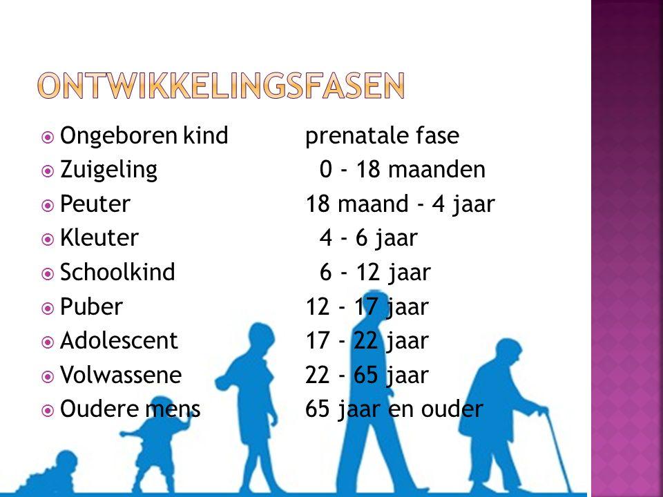  Ongeboren kindprenatale fase  Zuigeling 0 - 18 maanden  Peuter18 maand - 4 jaar  Kleuter 4 - 6 jaar  Schoolkind 6 - 12 jaar  Puber12 - 17 jaar