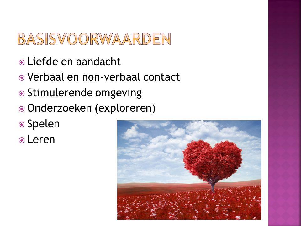  Liefde en aandacht  Verbaal en non-verbaal contact  Stimulerende omgeving  Onderzoeken (exploreren)  Spelen  Leren