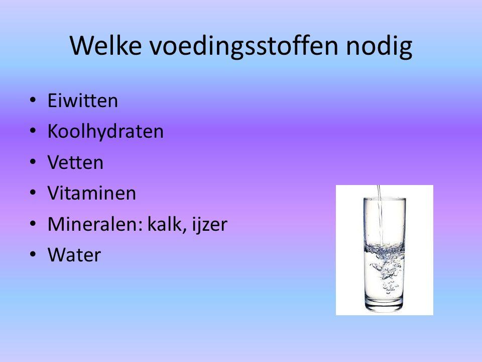 Welke voedingsstoffen nodig Eiwitten Koolhydraten Vetten Vitaminen Mineralen: kalk, ijzer Water