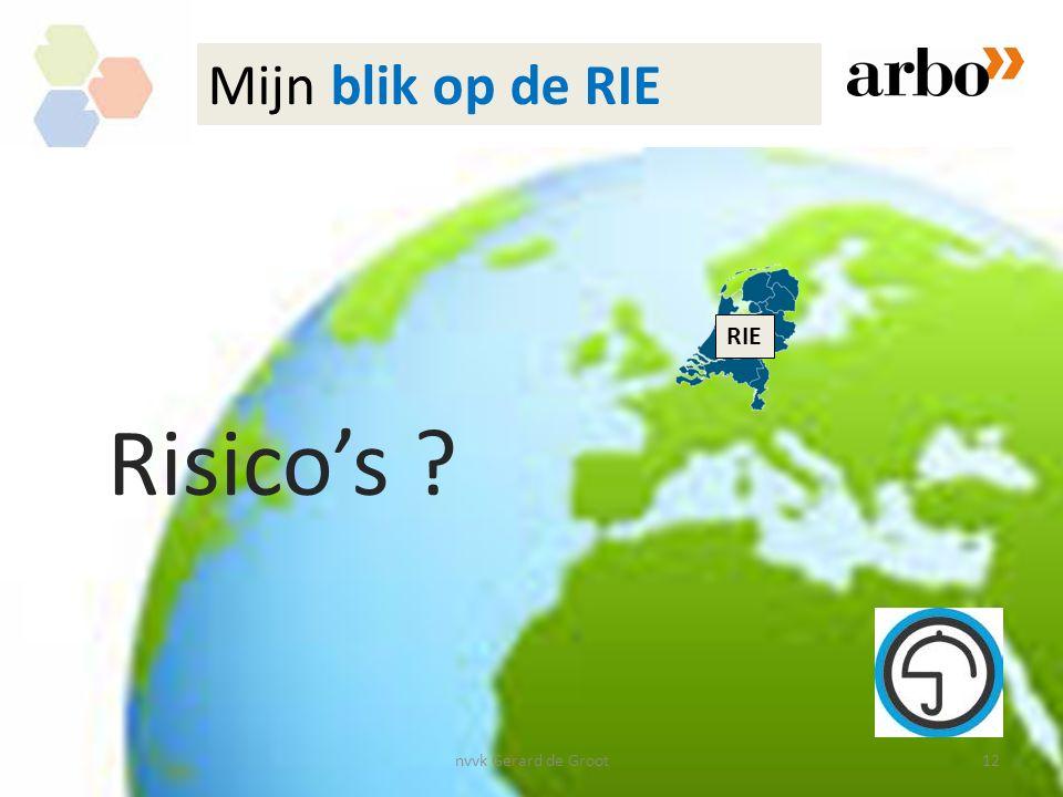 nvvk Gerard de Groot12 RIE Mijn blik op de RIE Risico's ?