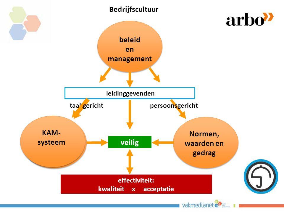 Normen, waarden en gedrag beleid en management veilig leidinggevenden effectiviteit: kwaliteit x acceptatie KAM- systeem taakgerichtpersoonsgericht KAM- systeem Bedrijfscultuur
