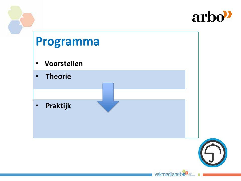relatie tussen gemelde risico's en ongevallen Bronnen: Kjellen 2000, Booster 2005 meldingen verzuimongevallen © G.P.M.