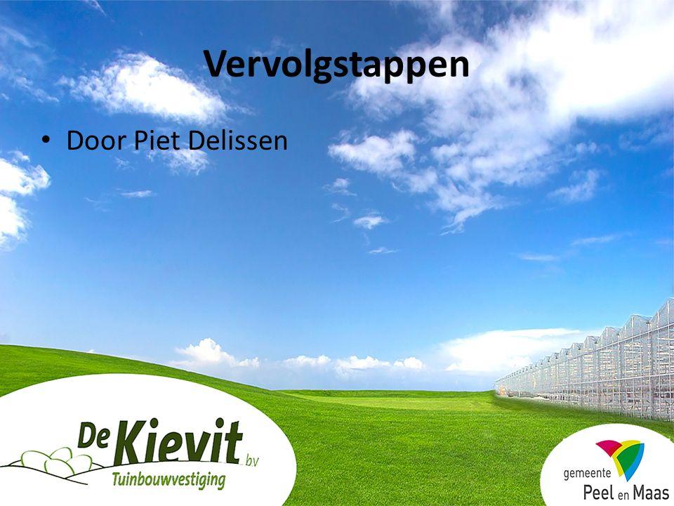Door Piet Delissen Vervolgstappen