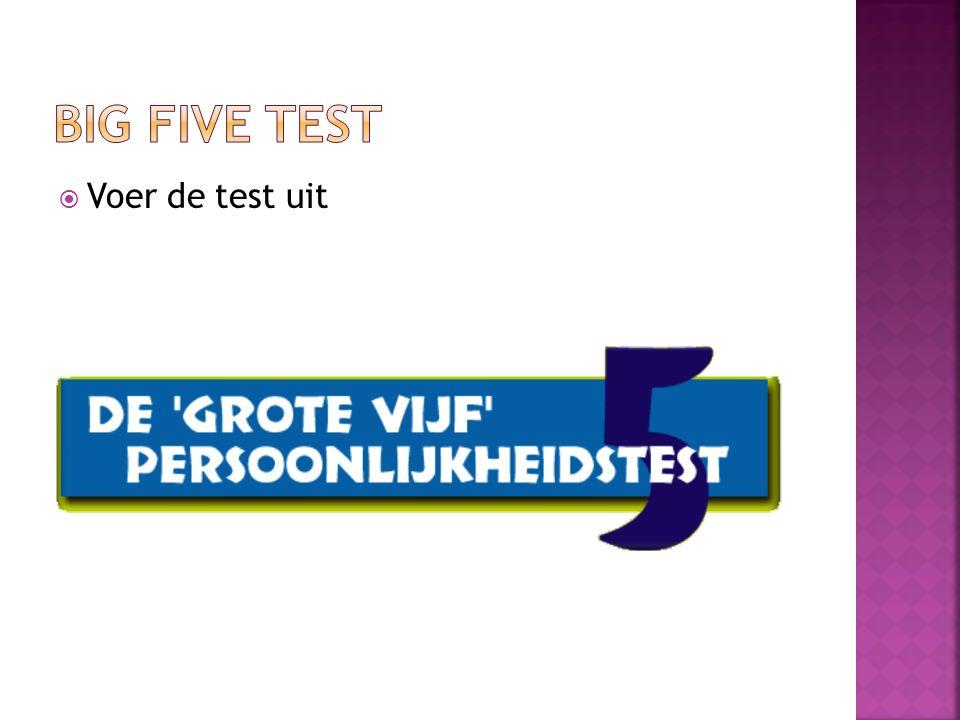  Voer de test uit
