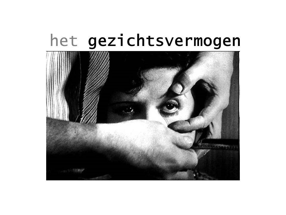 ontwaren Daarna kiest die massa voor Jan Peter Balkenende, een mix van Harry Potter en extreme stijfburgerlijkheid, een man in wie ik geen spoor van charisma kan ontwaren.
