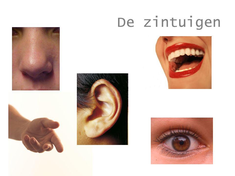 idioom oog om oog, tand om tand = rechtvaardiging van een wraakactie