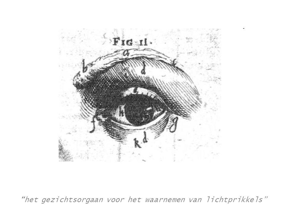 de oogopslag In één oogopslag = onmiddellijk