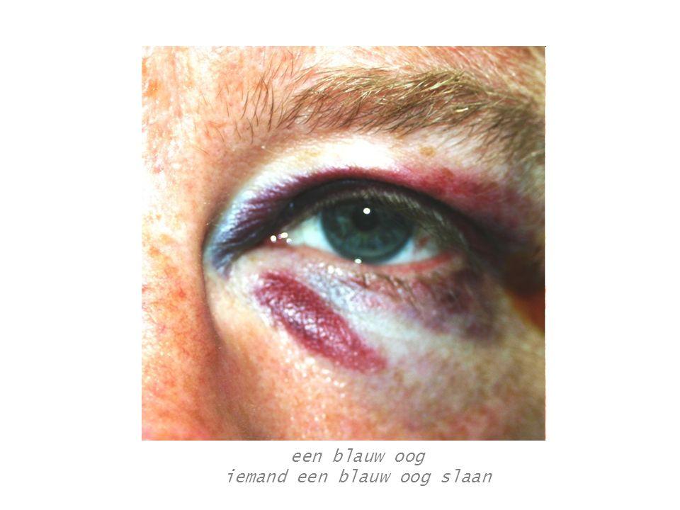 idioom Jean-Jacques De Gucht (25) kroop door het oog van de naald in Erpe-Mere.
