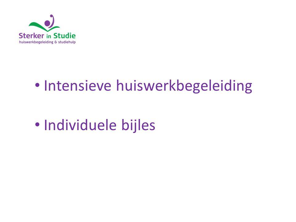 Intensieve huiswerkbegeleiding Individuele bijles