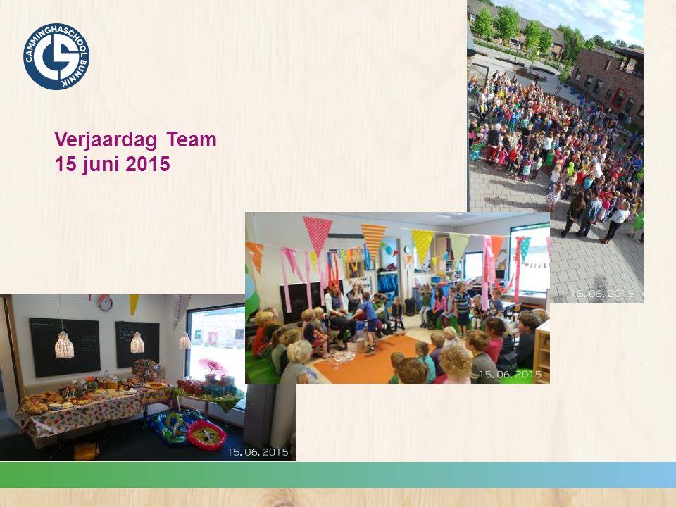 Verjaardag Team 15 juni 2015