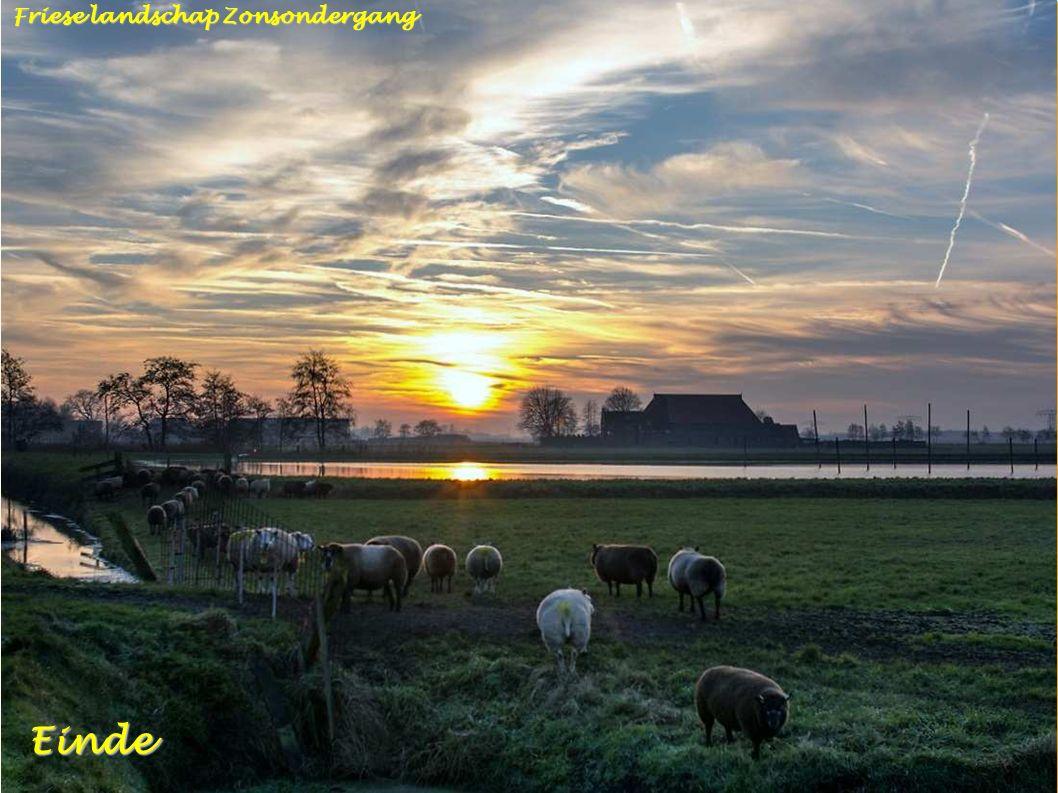 Bonkevaart Leeuwarden