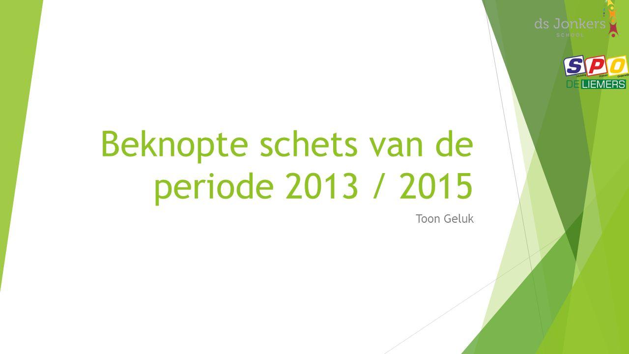 Beknopte schets van de periode 2013 / 2015 Toon Geluk