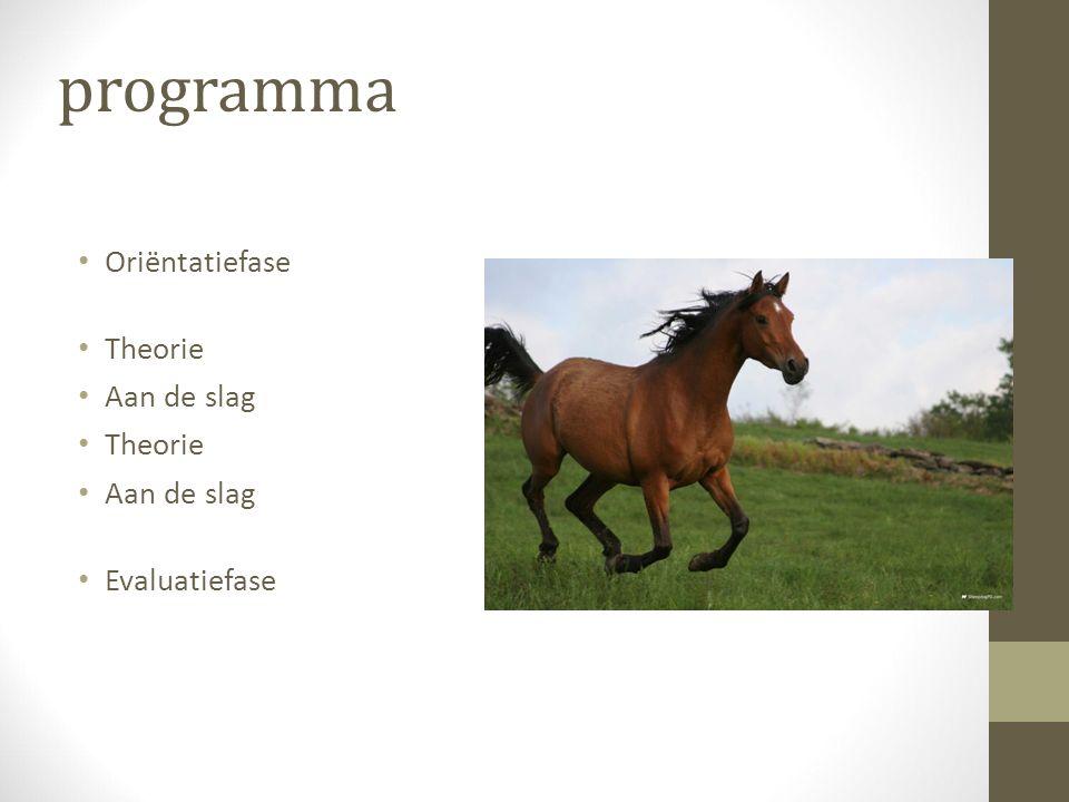 Oriëntatiefase Brainstormen Ga in tweetallen nadenken over de natuurlijke behoeften van het paard.