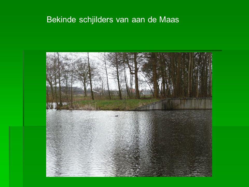Neijn geijn plaats es schjoener op dees aard, daan de oevers langs de Maas