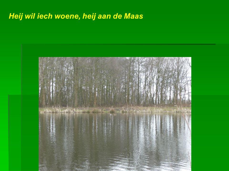 Geen plaats is mooier op dees aard dan ons eigen Limburgs-Maasland. Muziek: Maaslands volkslied
