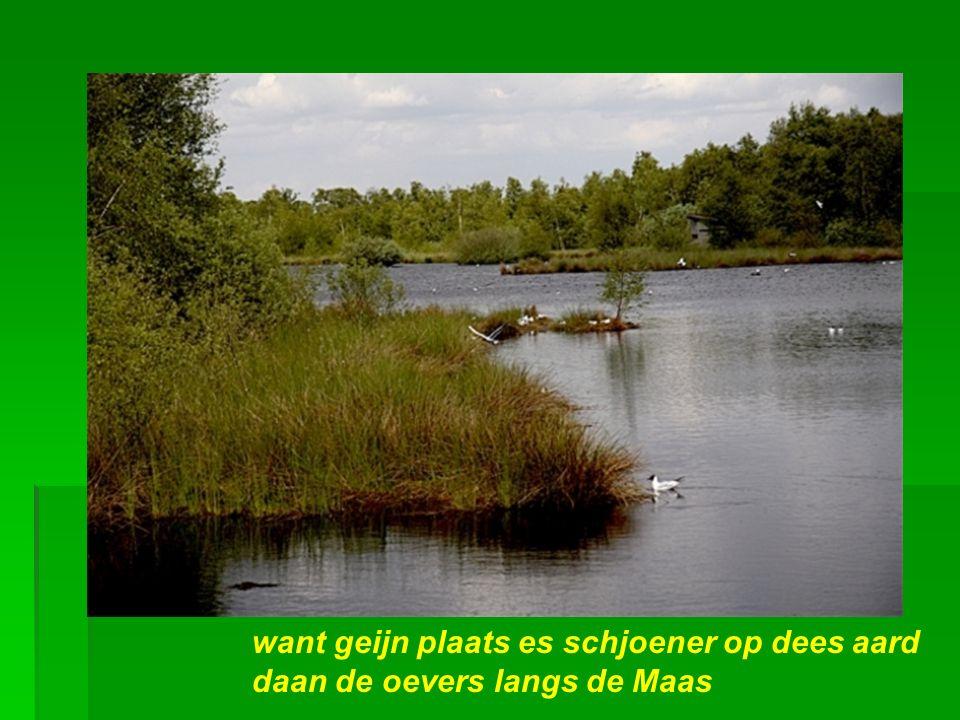 Heij wil iech woene, heij aan de Maas Dat stökske Limburg, heij aan de Maas…
